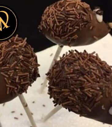 Igel Cake Pops – Stop Foodwaste